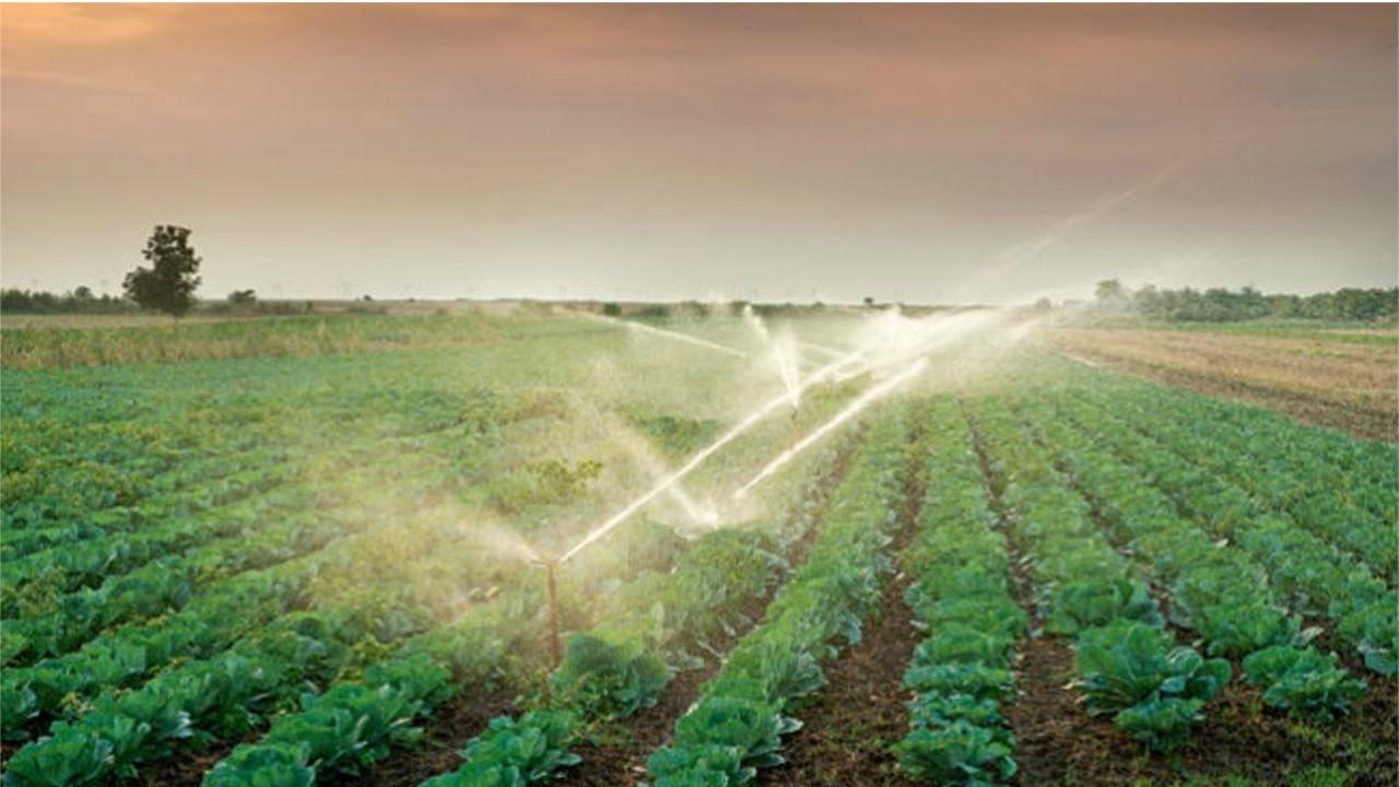 Consideraciones Sobre La Ley De Riego Agrario