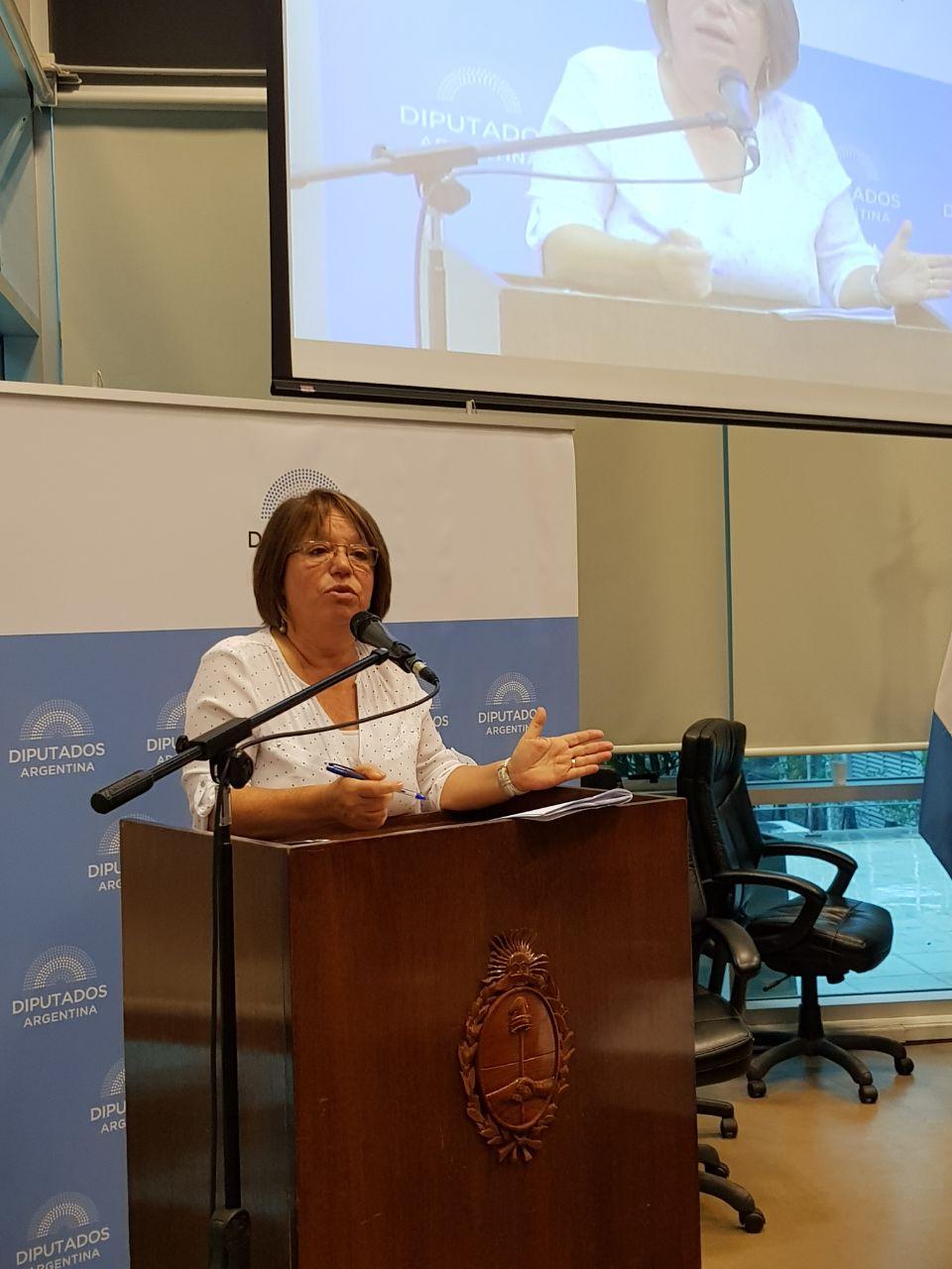 Argentina Debate: Interrupción Voluntaria Del Embarazo